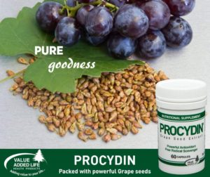 Procydin antioxidant
