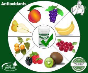 Procydin-Antioxidants-adults