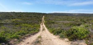 Drive around Gourikwa Reserve