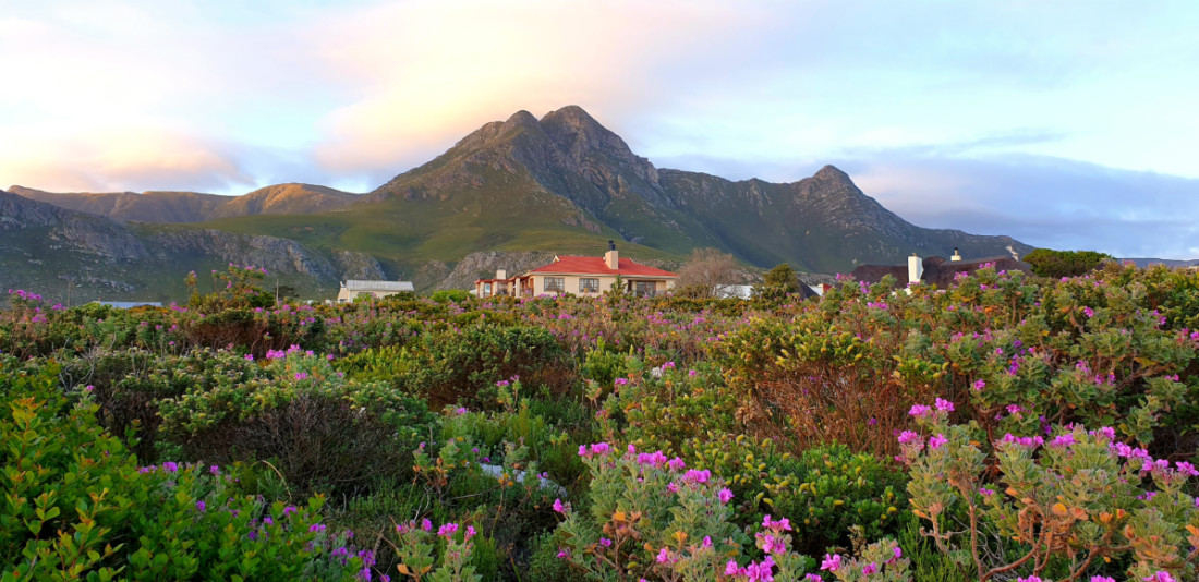 Parents Getaway Weekend To Kleinmond. View of Whaler's Point Guesthouse.