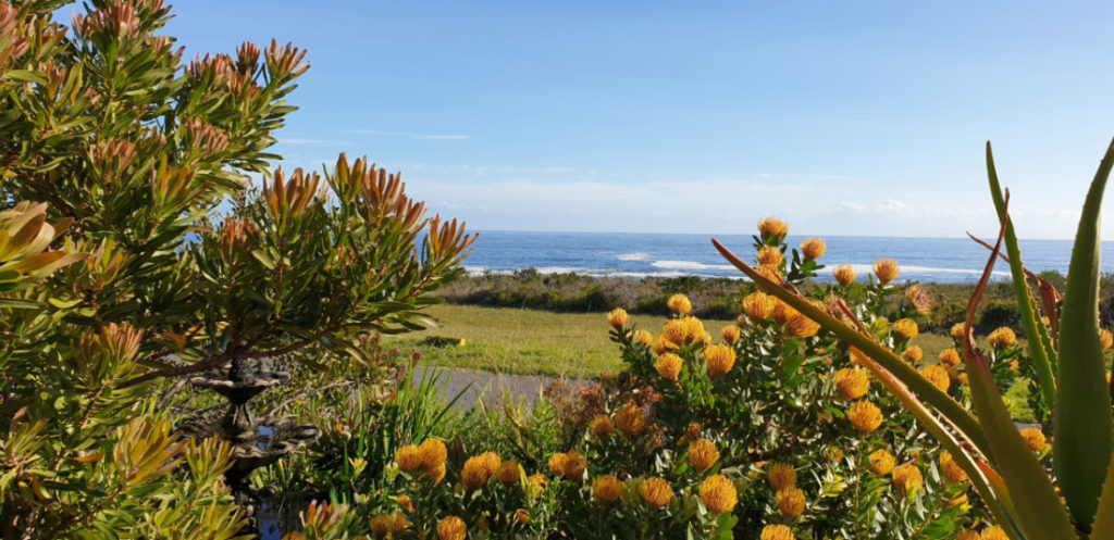 Sea view from Whaler's Point Guesthouse in Kleinmond
