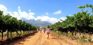 One Stop Wanderlust in the winelands at Eikendal